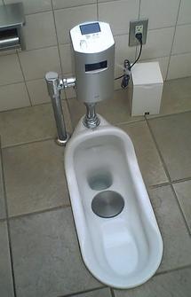 Selecting Bathroom Fixtures Choosing The Perfect Toilet - Public bathroom fixtures
