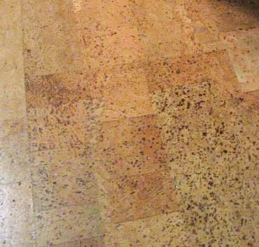 cork flooring is very green relatively inexpensive very water resistant and absolutely beautiful as well as a treat to walk on
